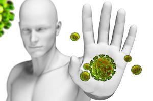 Болиголов лечебные свойства и противопоказания от рака